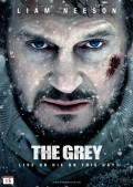 4026-The-Grey-nor-DVD-f+r