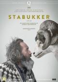 4294-Stabukker-nor-dvd-f+r